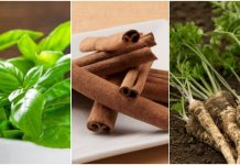 Biljke koje snižavaju visoki krvni tlak