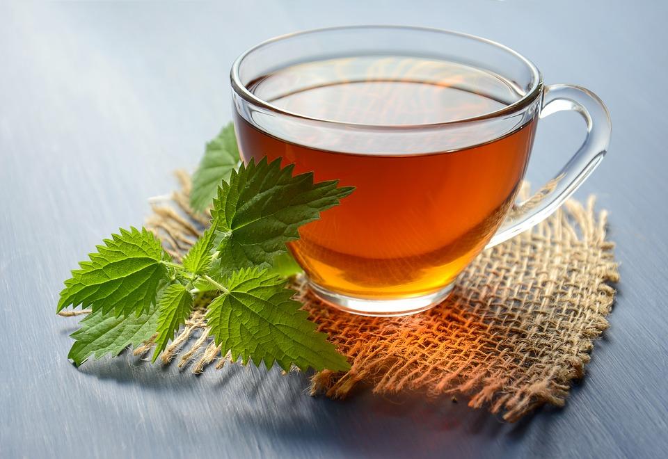 Čaj od koprive za mršavljenje