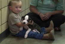 Dječak s rascjepom usne dobio štene