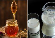 Med i mlijeko