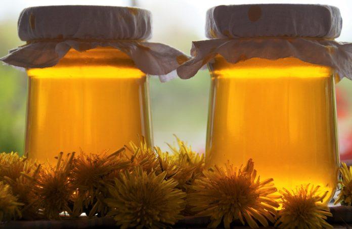 Med od maslačka