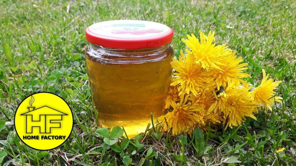 Med od maslačka zdravlje