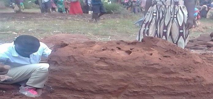 Islamisti zakopali kršćanina živoga u mravinjak